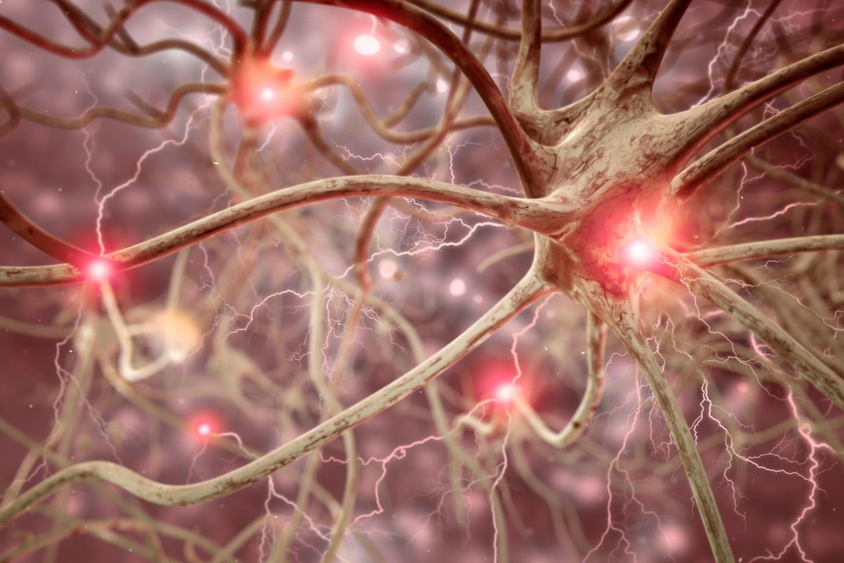 Aivosolujen koolla on väliä. Kuva: istock