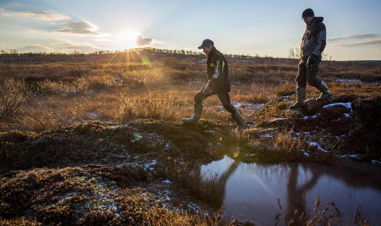 Palsasuo Kaldoaivin erämaassa Pohjois-Lapissa. Kuva: Mika Ranta