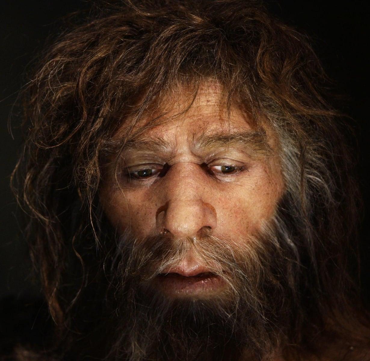 Tältä näyttää neandertalilaismies kroatialaisen nendertalmuseon taiteilijan hahmottelemana. Kuva: Nikola Solic / Reuters