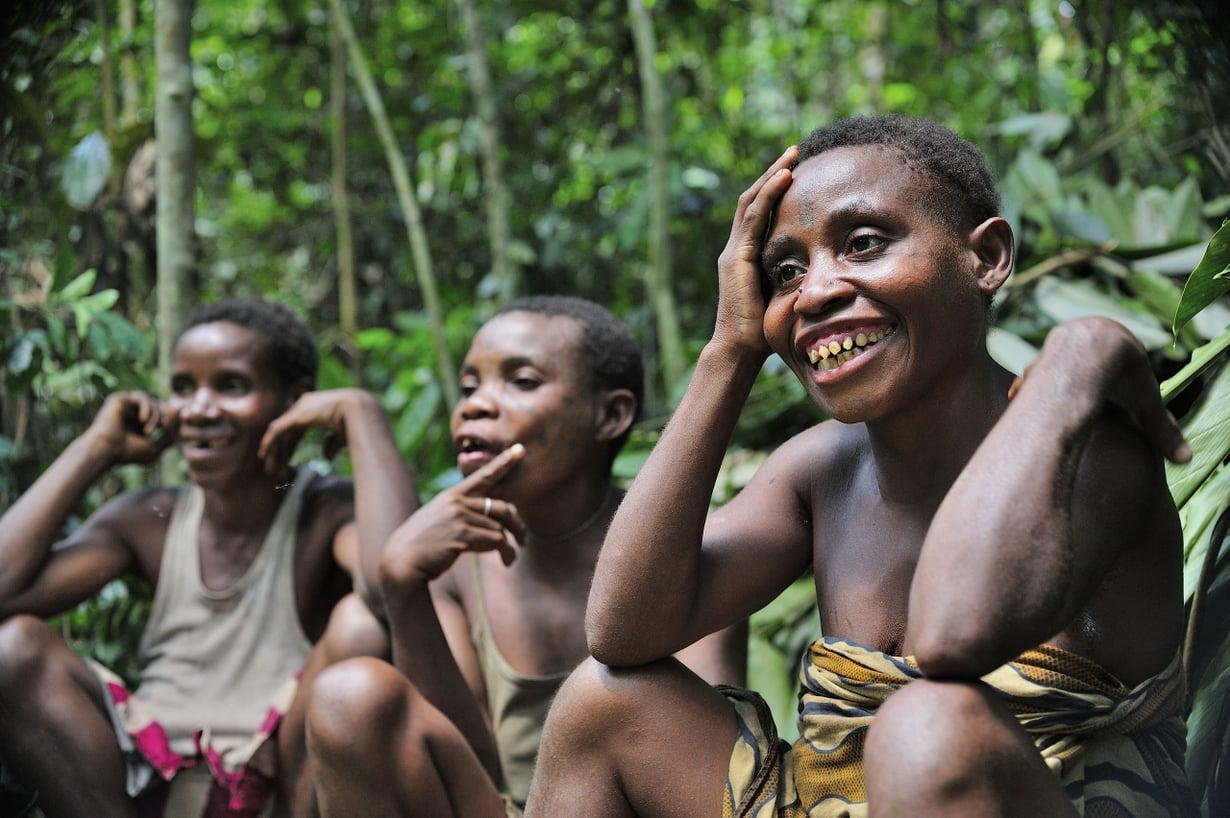 Sopeumat auttoivat sademetsissä. Kuva: Getty Images