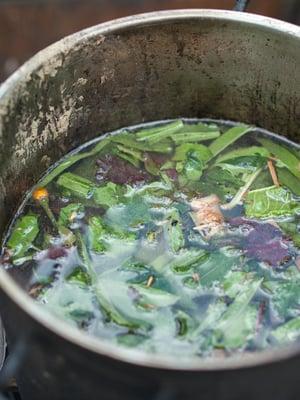 """Amazonin alueella ayahuascaa on käytetty kauan. Kuva: <span class=""""photographer"""">Shutterstock</span>"""