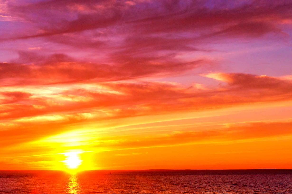 Väriherkkyys vihjaa, että värinäkö saattoi kehittyä erottamaan keltaa ja sineä ja rytmittämään päivää ja yötä. Kuva Shutterstock.