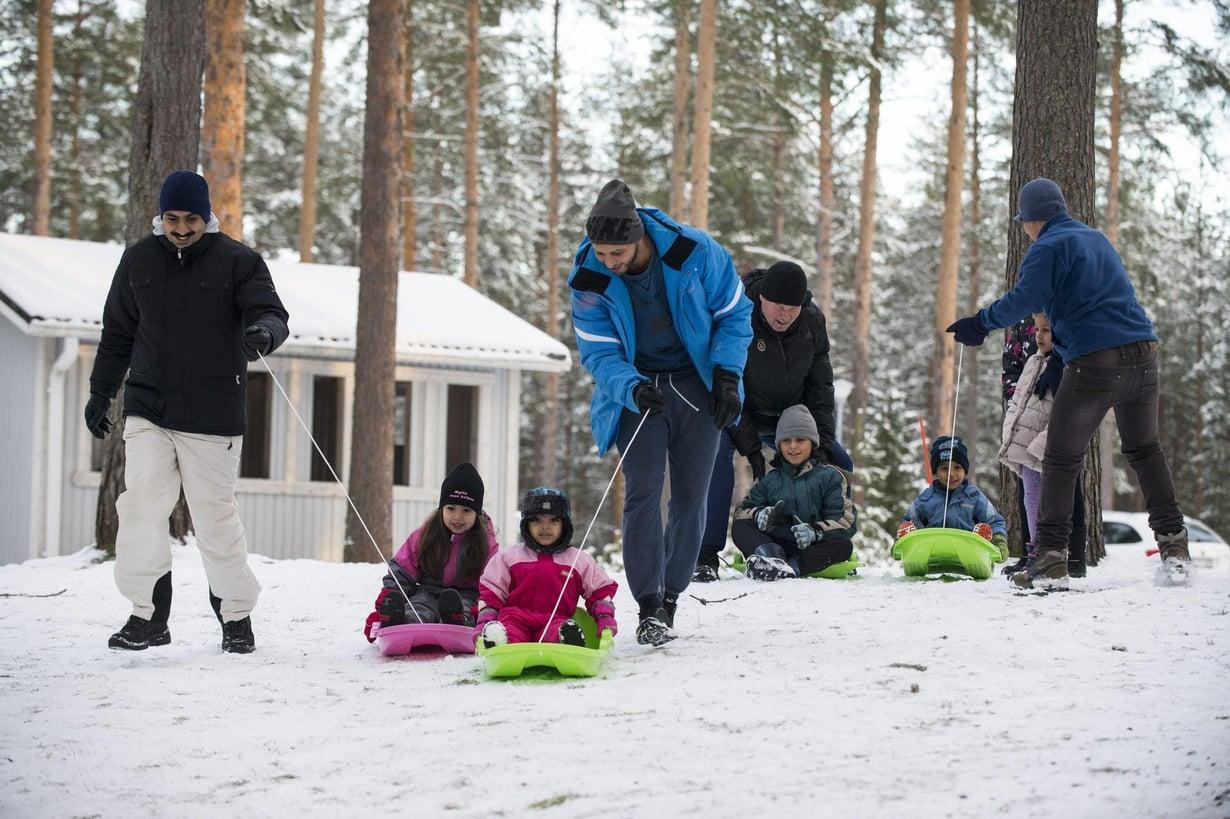 Maahanmuuttajat pulkkailevat Muhoksella. Kuva: Ville Honkonen / IS