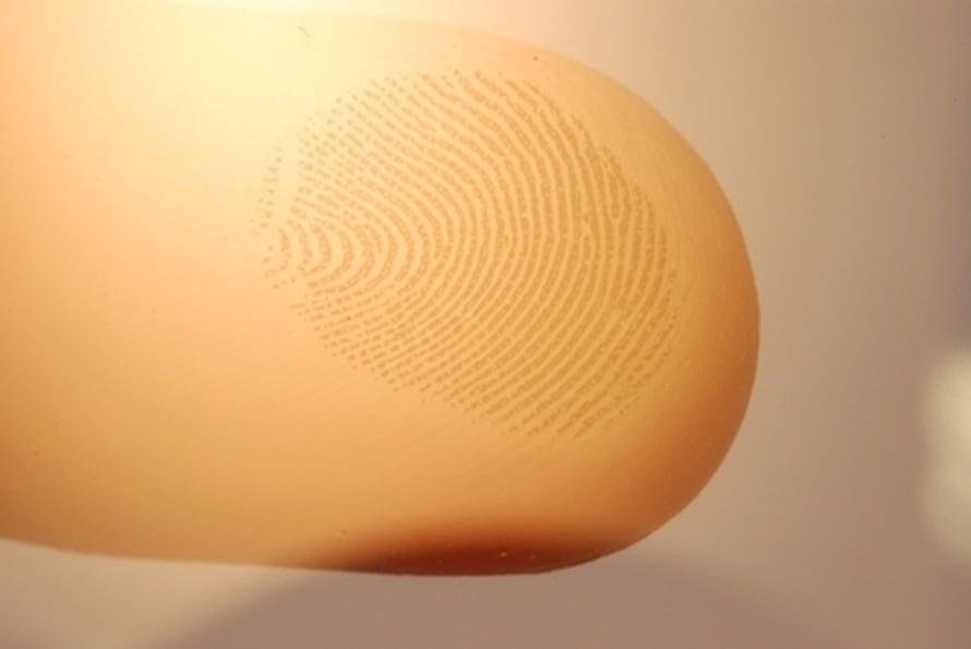 """Kun vain sormenjäjen harjanteet osuvat tunnusteltavaan pintaan, syntyneistä värähtelyistä vahvistuvat ne taajuudet, joille tuntoaisti on herkistynyt. Kuva: <span class=""""photographer"""">Science/AAAS</span>"""