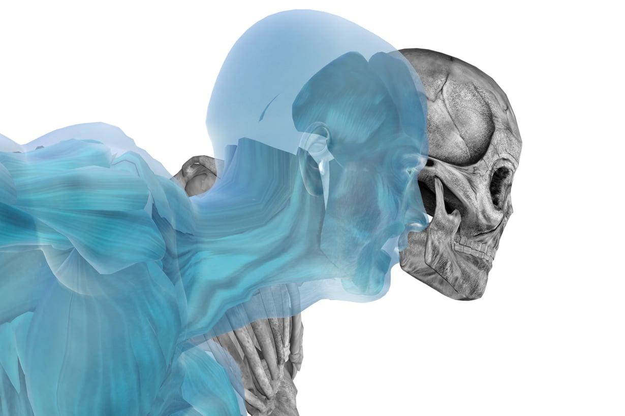 Kuolema muuttaa muotoaan, koska elämme entistä vanhemmiksi. Kuva: Shutterstock