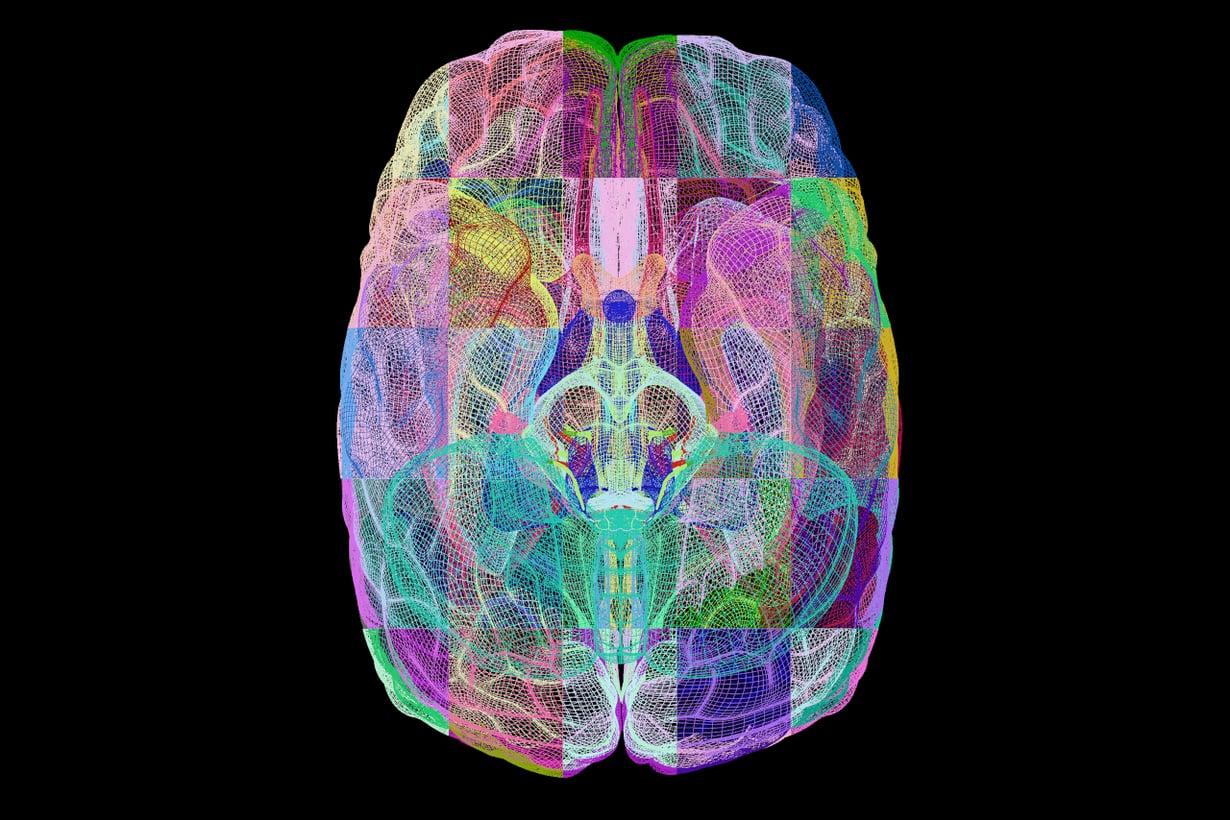 Monen autismikirjoon liittyy älyllinen kehitysvamma, mutta osa on keskivertoa älykkäämpiä.  Kuva: SPL/MVPhotos