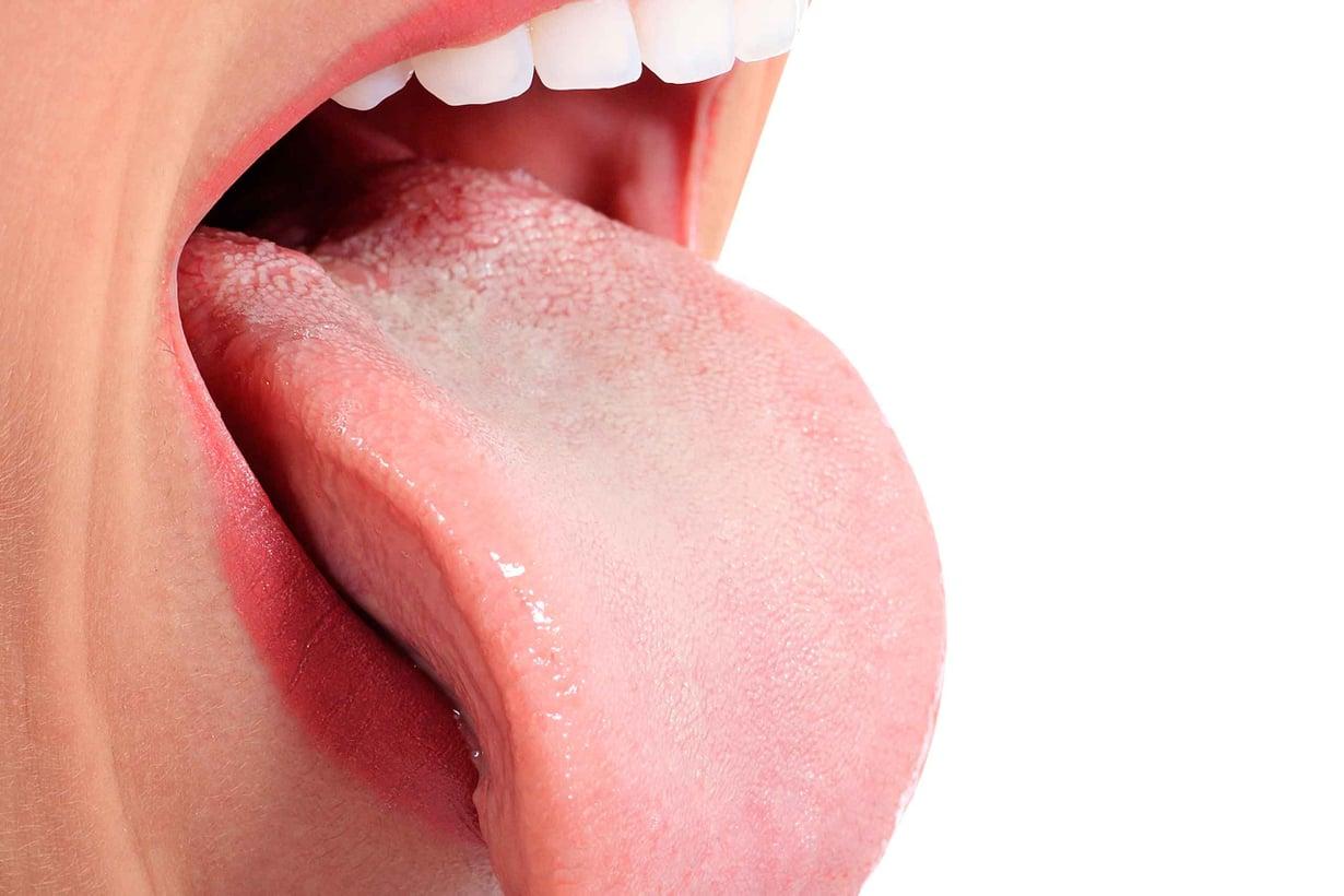 Sylkeä erittyy etenkin kielen alle ja ylähampaiden poskipuolelle. Kuva: Shutterstock